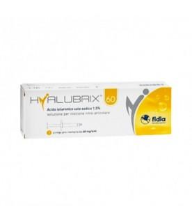 Hyalubrix 60 Soluzione per Iniezione Intrarticolare 1 Siringa pre-riempita 60/4ml