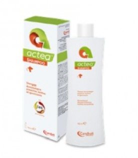 ACTEA Shampoo 150ml