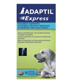 ADAPTIL 10 Cpr