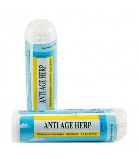 ANTIAGE HERP GR 4G