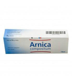 Arnica Comp Pom 50g Heel